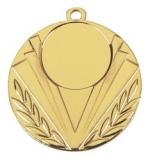 E247 Medaille goud/zilver/brons (50mm)