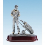 Q74 Beeld golfer
